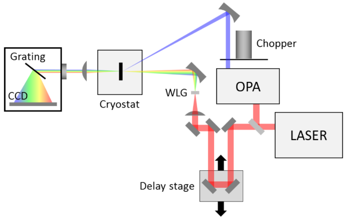 Figure shows diagram for typical pump-probe experiment
